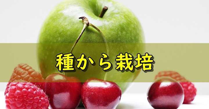 市販の果物の種をうまく発芽させる方法。りんごやアボカド・マンゴーを自家栽培する際の要点・注意点
