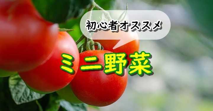 小さい野菜
