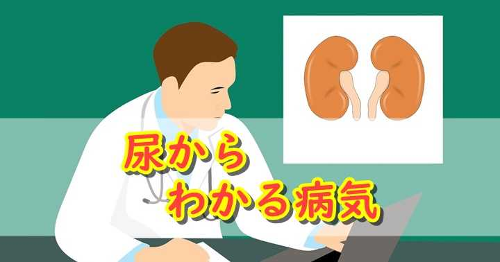 尿に関係する病気・症状一覧。尿の色や状態からわかる身体の異常