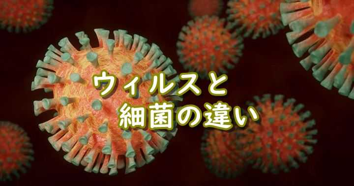ウィルス 細菌 違い